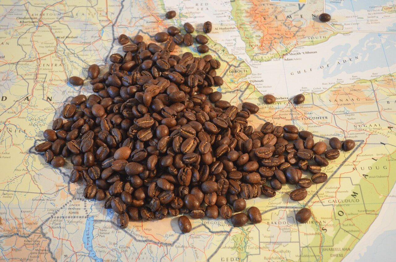 Goûter le café éthiopien, une belle rencontre gustative